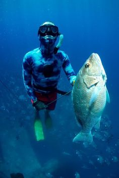 I did a lot of spear fishing in FLA...    Here's a Mangrove Snapper