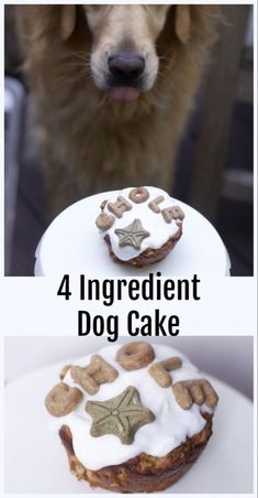 ingredient Homemade Dog cake Four Ingredient Dog Birthday Cake for One do you celebrate birthdays for dogs? IF so then you need thisFour Ingredient Dog Birthday Cake for One do you celebrate birthdays for dogs? Cupcakes For Dogs Recipe, Dog Cake Recipes, Dog Treat Recipes, Dog Food Recipes, Easy Dog Cake Recipe, Pupcake Recipe For Dogs, Grain Free Dog Cake Recipe, Dog Cake Recipe Peanut Butter, Meatloaf Recipes
