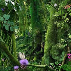 "Robins Key - Lovely moss covered trees with purple thistle and yellow butterfly, pink wildflowers. Such a peaceful, COOL looking woodlands scene! RESEARCH #DdO:) - https://www.pinterest.com/DianaDeeOsborne/flowers-beyond-expected/ - FLOWERS BEYOND EXPECTED. Photo uncredited on most #Pinterest boards- I always try to give credit- is by Ruud van Empel who "" creates digitally enhanced photographs with a dream-like quality. His idyllic scenes of children in lush tropical settings evoke a modern…"