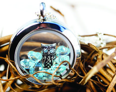 NEW Origami Owl charms debuting 11/1/12!!!  Darling Owl with Blue Crystal Eyes.  Hoot Hoot!!!  {OvO}
