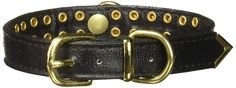 Mirage Pet Products No.31 Dog Collar, 12-Inch, Black >>> Be sure to check out this awesome product. (This is an affiliate link and I receive a commission for the sales)