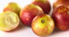 Le camu camu est un petit fruit rond originaire d'Amazonie au goût prononcé et acide, réputé pour son pouvoir antioxydant. L'arbre du camu camu peut atteindre jusqu'à 4 mètres de haut alors que ses fruits minuscules ne mesurent que 2 à 4 cm de diamètre.