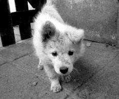 cute :oooo :3