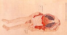 Anatomical illustrations from Edo-period Japan - This illustration is from a book by Genshun Koishi on the dissection of a 40-year-old male criminal executed in Kyōto in 1783.