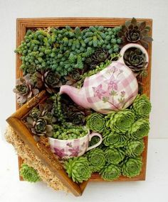 16 Splendid Succulent Planter Frames to Beautify Your Home (7)