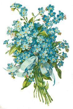 Glanzbilder - Victorian Die Cut - Victorian Scrap - Tube Victorienne - Glansbilleder - Plaatjes : Blumen