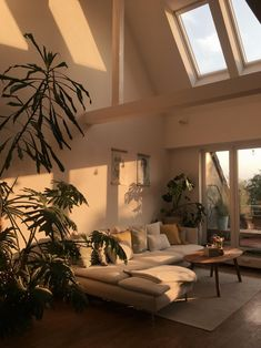 when-the-sun-hits-the-couch-whenthesunhits-sun-favoriteplace-home-interior-couch-urbanjungle-light-sunlight-plants-plants-plants/ SULTANGAZI SEARCH House Design, House, Dream Room, Home Decor, House Interior, Bedroom Decor, Aesthetic Rooms, Home And Living, Dream Rooms