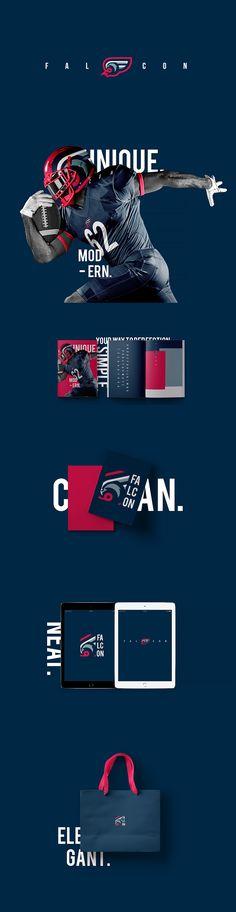 Graphic design trends Falcon Branding by Djordje Djordjevic