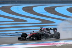 Stoffel Vandoorne, McLaren MP4-30, Paul Ricard January testing