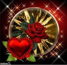 2zxda-4awkm-1 Beautiful Rose Flowers, Romantic Flowers, Beautiful Love, Dream Pictures, Flower Pictures, Good Night Couple, Good Morning Coffee Images, Roses Gif, Beau Gif
