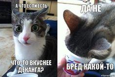 http://dymok.net.ua/zhidkosti.html  ЕСТЬ!👍👍👍 в DYMOK ДВАДЦАТЬ брендов⚠️, ЧЕТЫРЕСТА вкусов и больше⚠️ жидкостей! Заходи, попробуй, покупай!