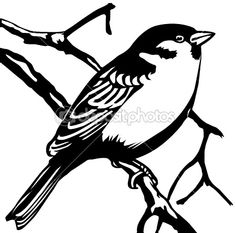 Vector silhouette sparrow