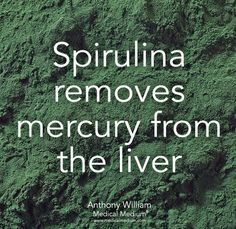 Holistic Health Remedies Spirulina detoxes Mercury from the liver Tomato Nutrition, Health And Nutrition, Health And Wellness, Health Tips, Holistic Nutrition, Wellness Tips, Natural Health Remedies, Natural Cures, Holistic Remedies
