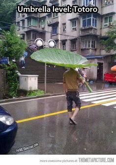 Totoro umbrella…