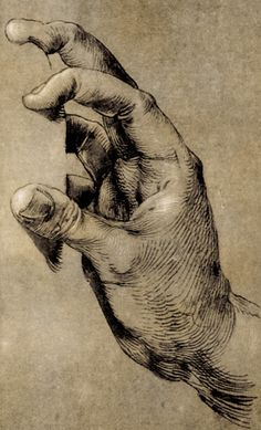 Albrecht Dürer, study of hands, art, illustration.