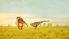Saurolophus and Tarbosaurus by John Conway