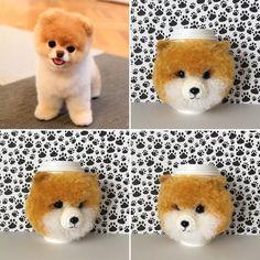 21 Best Pomeranian Love Pomeranian Gifts Pomeranian Gifts Images