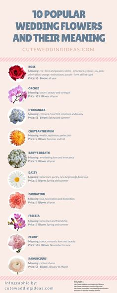 nice 10 popular wedding flowers and their meaning infographic
