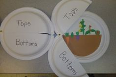 Vegetables: What grows on the top (above) and what grows on the bottomr (under) the ground.