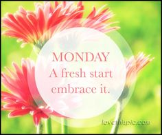 Have a beautiful monday monday monday quotes happy monday have a have a beautiful monday monday monday quotes happy monday have a great week monday quote flower love pinterest voltagebd Gallery