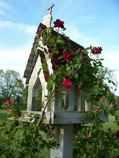 birdhouses and climbing vine