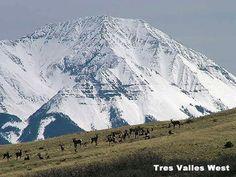 Spanish Peaks from Tres Valles West near La Veta Colorado
