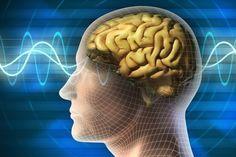 A morte cerebral é a incapacidade do cérebro de manter as funções vitais do organismo, como o paciente respirar sozinho, por exemplo.