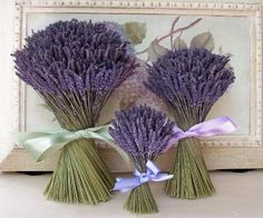 i want a lavender bouquet! probably not as much as the bigger ones, but definitely this flower!
