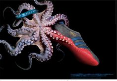 Read more: https://www.luerzersarchive.com/en/magazine/print-detail/adidas-31369.html adidas Tags: adidas,180, Amsterdam,Caprice Yu,Tim Flach Photography, London,Tim Geoghegan