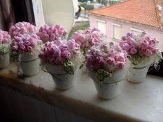 Kwiaty i inne rag radość