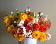 Portobello Design: floral design YASMINE: A Still Life