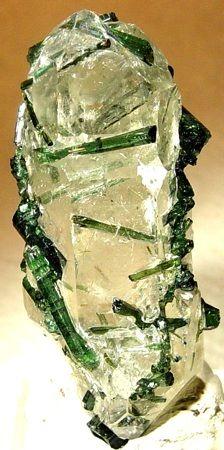 Elbaite on quartz Origin: Taquaral, Minas Gerais, Brazil Sample size: x x 2 cm Cool Rocks, Beautiful Rocks, Minerals And Gemstones, Rocks And Minerals, Green Gemstones, Stones And Crystals, Gem Stones, Rock Collection, Mineral Stone