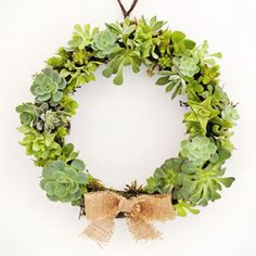 How-to tutorial for making your own DIY succulent wreath.