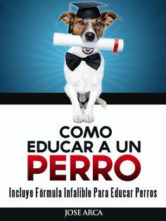 Aprende Como Educar a un Perro. http://www.educarunperro.com/blog/entrenamiento-elite-para-educar-un-perro/