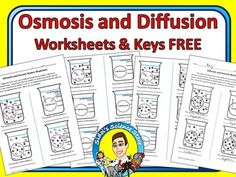 Included- 2 worksheets and keysWorksheet for students to practice identifying the movement of water and solute in beakers. Includes my modified and regular versions along with my answer key. The modified version includes images of the water molecules and solute molecules to help students identify concentration gradients and determine molecular motion.
