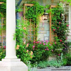 Как сделать шпалеру своими руками! | Дачный сад и огород