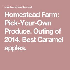 Homestead Farm: Pick-Your-Own Produce. Outing of Best Caramel apples. Pick Your Own Pumpkins, Produce Market, Homestead Farm, Cherry Tart, Caramel Apples, Blueberry, Strawberry, Peach, Bucket
