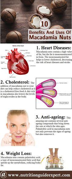 10 Amazing Benefits And Uses Of Macadamia Nuts