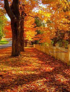 Autumn is in full swing in Bennington, Vermont