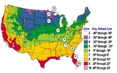Plant Zones Map | Average US first and last frost dates - The Hummingbird Forum FAQ