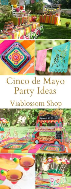 Cinco de Mayo Party Ideas for all your Mexican Fiesta Parties by Via Blossom