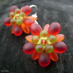 Želé Tropic Krásenky...