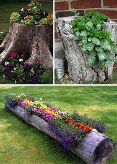 Цветочный дизайн сада фото.