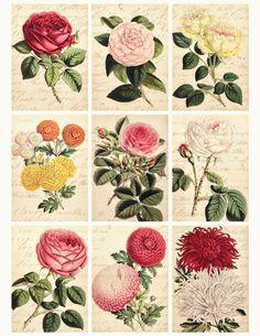 Sweet Vintage Roses Printable Gift Tags