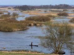 Mało wody i brak śniegu mogą spowodować, że wiosną będzie niski poziom wody na rozlewiskach nad Biebrzą, co może niekorzystnie wpłynąć m.in. na masowo odpoczywające tam wówczas wędrujące ptaki – ocenia Biebrzański Park Narodowy w Światowym Dniu Mokradeł, który obchodzony jest 2 lutego.
