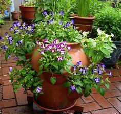 How to Correctly Plant a Strawberry Jar - Page 2 of 2 - Home and Garden Digest