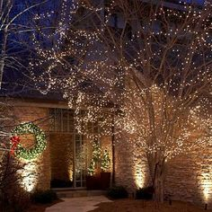 Green Christmas Lights | Christmas lights, Outdoor christmas and ...
