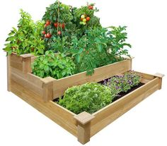 Vegetable Gardening with Raised Beds (10)
