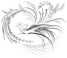 Victorian Calligraphy Bird Royalty