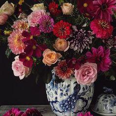 A beautiful floral arrangement. Beautiful Flower Arrangements, Floral Arrangements, Beautiful Flowers, My Flower, Flower Vases, Floral Photography, Flower Market, Gras, Planting Flowers